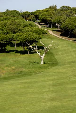 ALGARVE VILAMOURA MILLENIUM GOLF COURSE.with east-west-algarve.com
