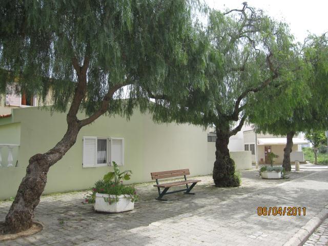 PORTUGAL ALGARVE LIVING TREES,CABANAS