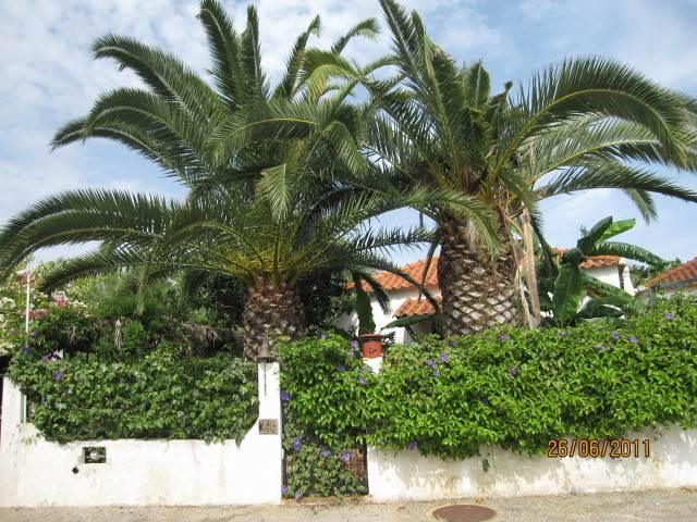 Twin Palms Conceicao de Tavira Portugal